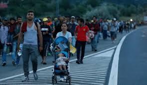 Refugee2015